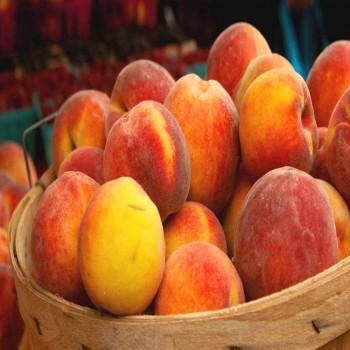 Саженцы персика Старка из Крыма
